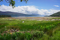 Shores of Loch Linnhe